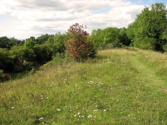Railway walk, Narborough