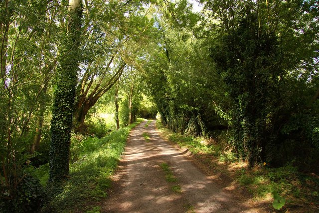 Mill Road to Marcham