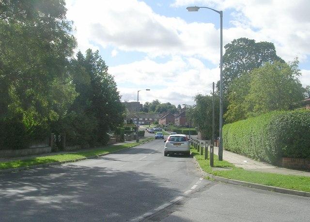Millfield Lane - viewed from Millfield Avenue