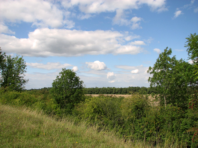 View from railway embankment, Narborough
