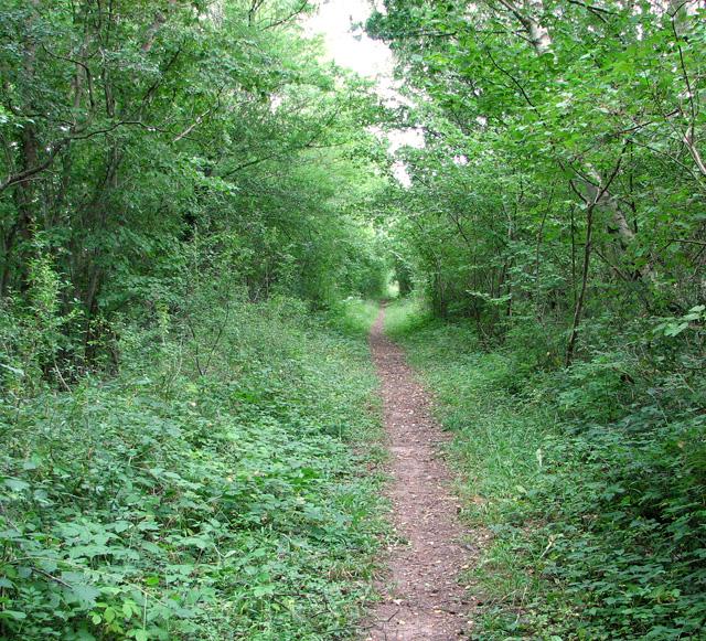 Narrow path on railway embankment, Narborough