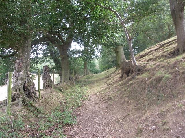 Path to Netherley Hall
