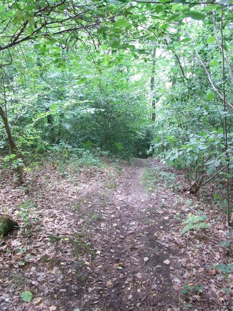 Steep path from High Wood