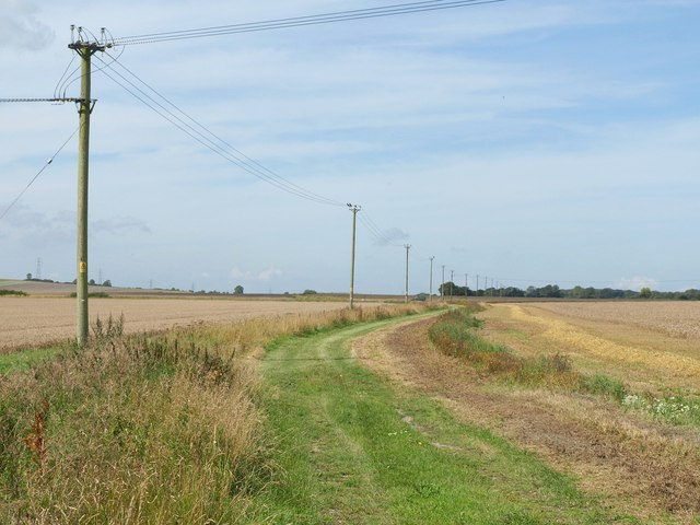 Bridleway near Wedhampton