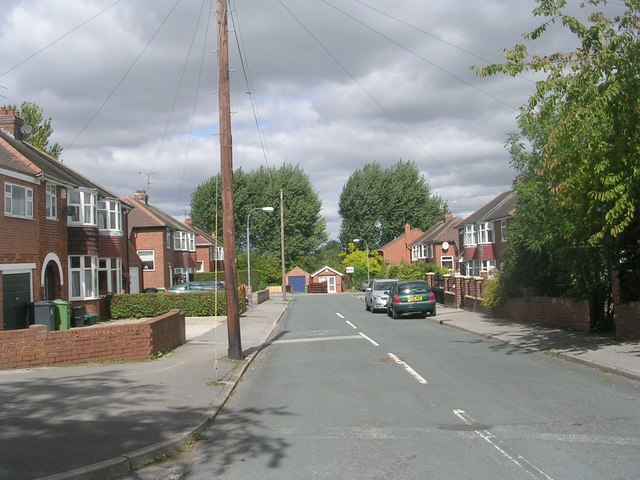 Carlton Avenue - viewed from Woolnough Avenue