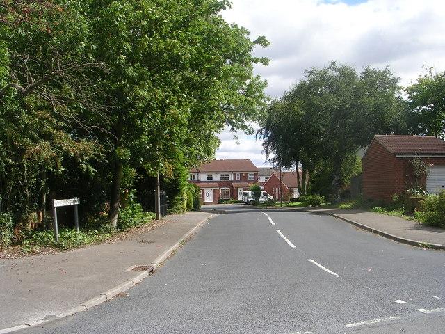 Wolviston Avenue - Carlton Avenue