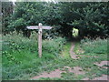 TG1941 : Path crossroads by E Gammie