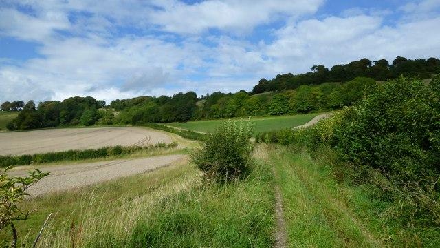 Minterne Parva, Dorset: the inside track