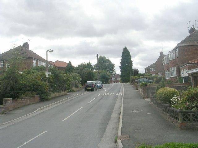 Newland Park Close - Thief Lane