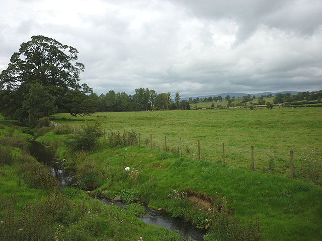 Pasture land beside Howe Beck