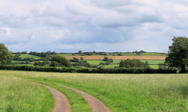 2011 : Track and footpath to Batcombe