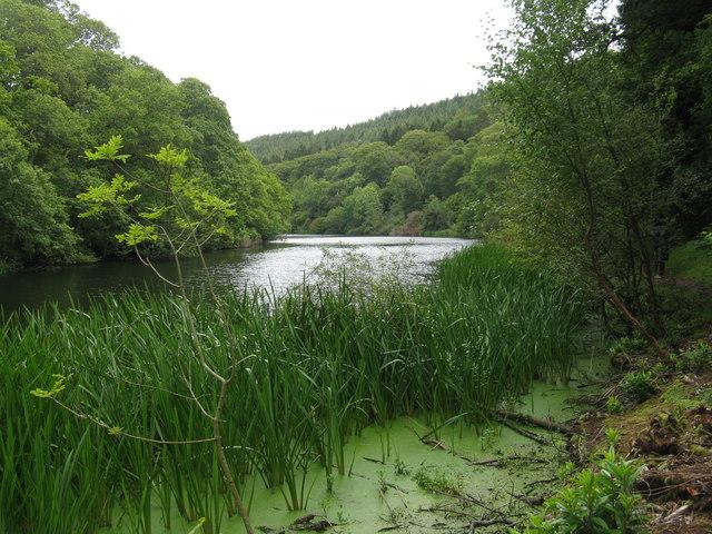 Pressmennan Lake and Wood