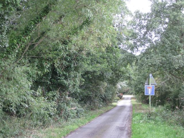 Southeast end of Marsh Lane