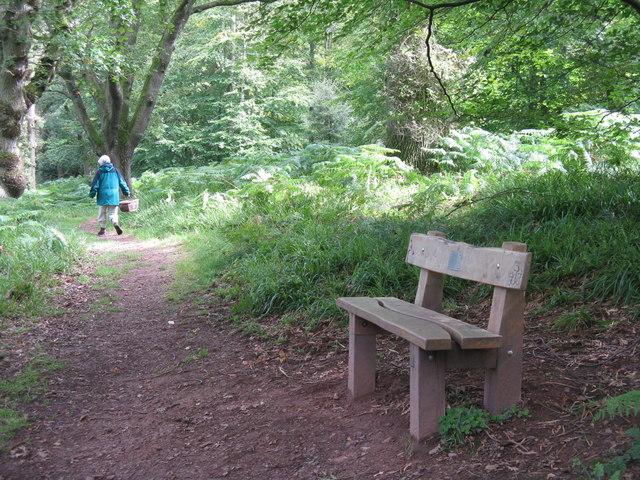 Path in Pressmennan Wood