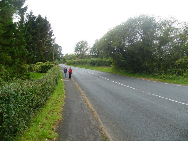 Lane near Hurst Green