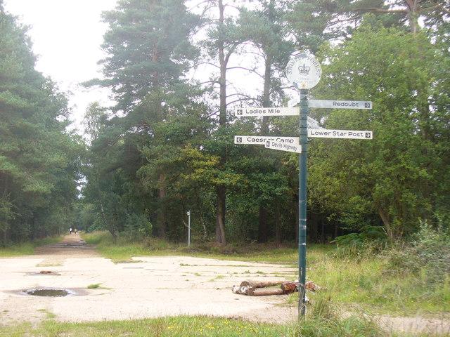 Upper Star Post, Swinley Forest