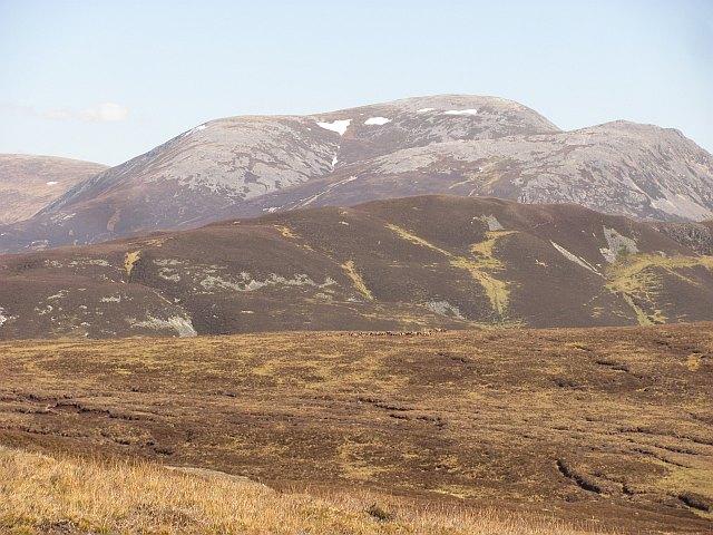 Moorland above Glen Tilt