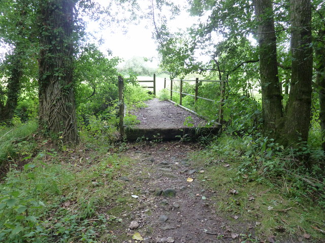 Footbridge over a River Rother tributary