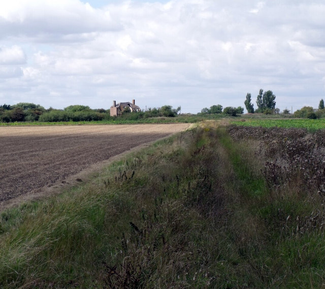 Overgrown Track to derelict house