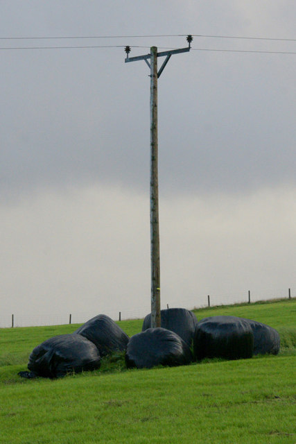 Silage bales around a telegraph pole at Hannigarth