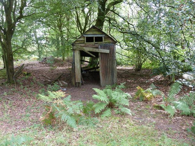 Disused hut in the Severals