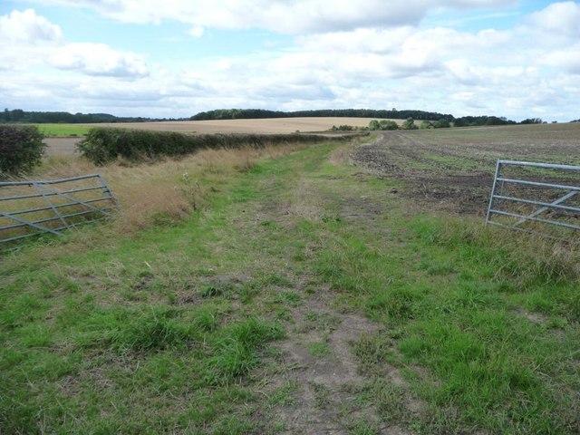 Farm track to Upper Barnbow Farm