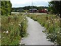 SK6178 : Cycle lane by Richard Croft