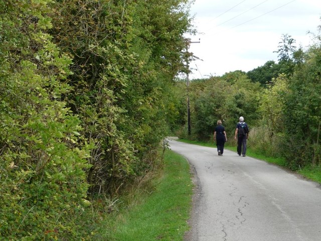 Walkers on Ellis Lane