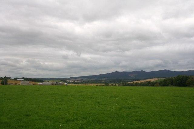 Little Newton Field