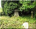 SJ8663 : St John's Church, Buglawton- Neglected corner by Jonathan Kington