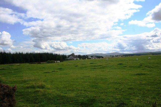 Fields by Blackdam Wood