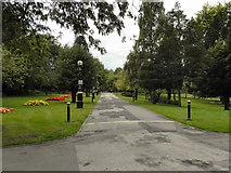 SJ8099 : Buile Hill Park by David Dixon