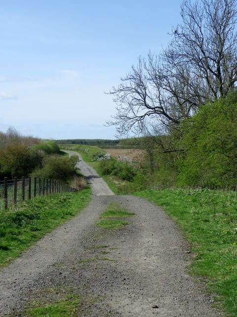 Bridleway, Longhirst