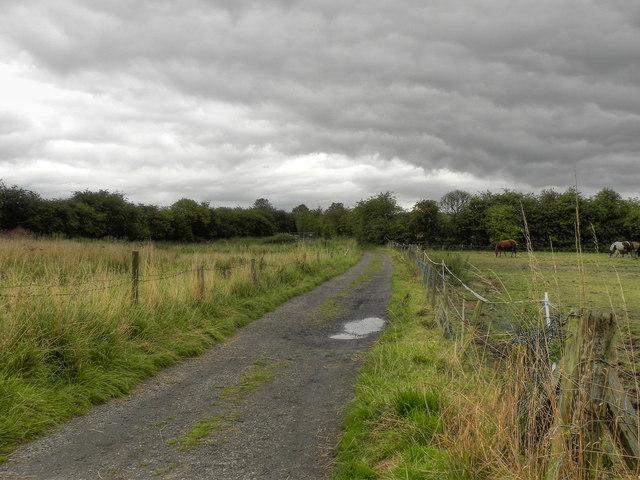 The Track Towards Spout Fold Farm