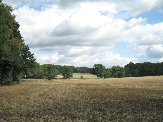 Low-lying land west of Berkswell Hall lake