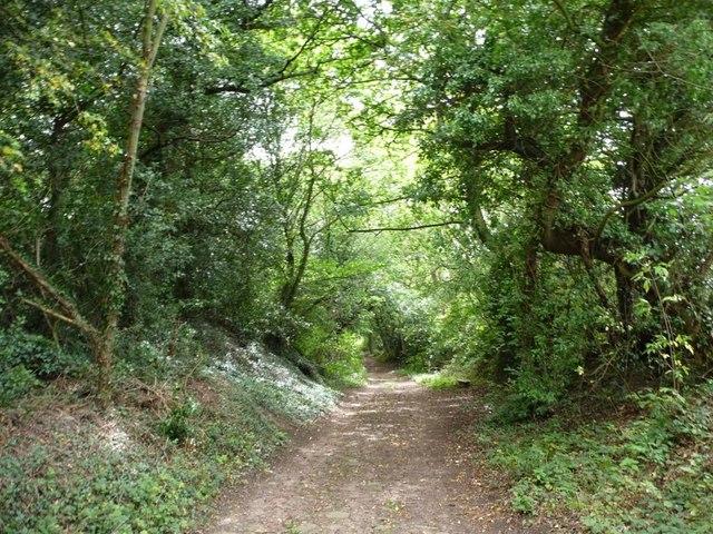 Barnbow Lane dropping down the hillside