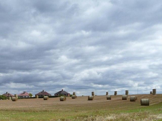 Straw bales on Limekiln Hill