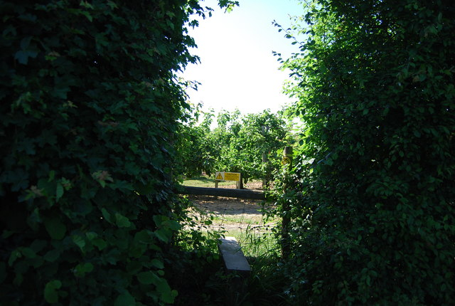 Stile into an orchard