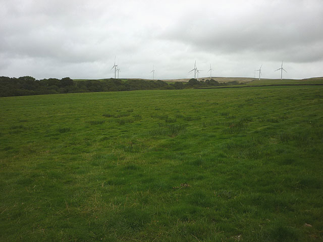 Pasture by Tarn Brook