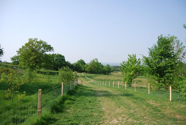 Footpath across the golf course