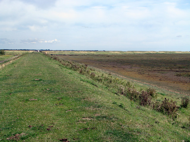 The outer sea bank at Freiston Low