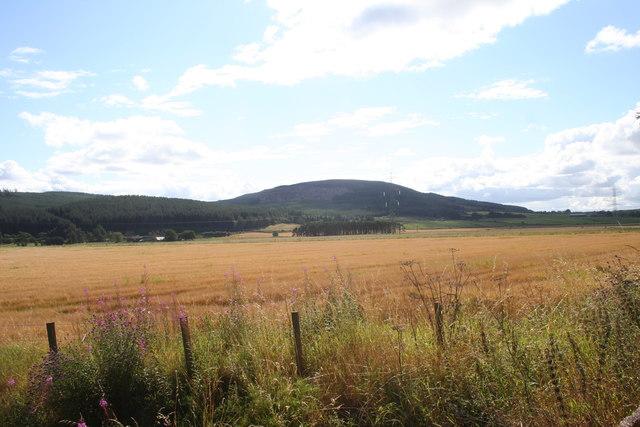 Braco Fields