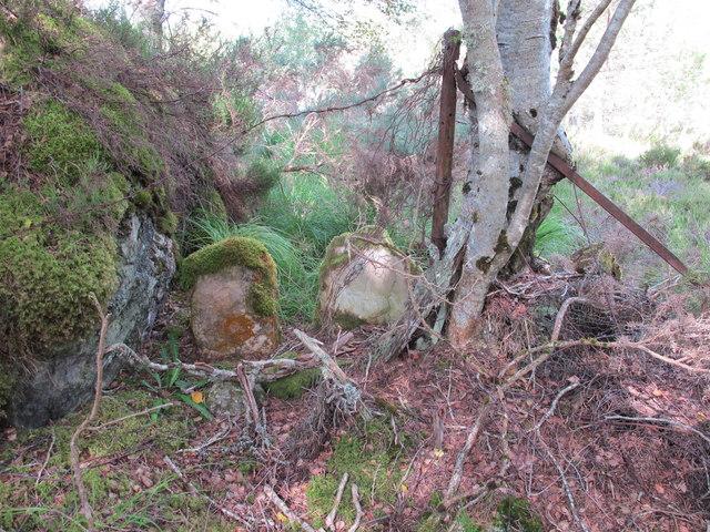Boundary Stone in Darnaway Forest