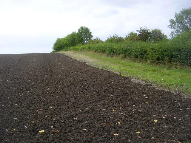 Dunchurch Farmland