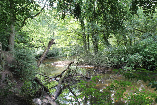 The meandering River Bollin