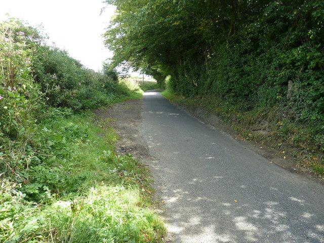 East along Stedham Lane