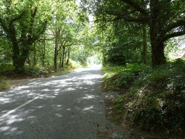 Woolbeding Lane south to Woolbeding