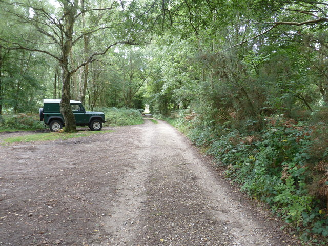 Land Rover hiding behind tree on Pound Common
