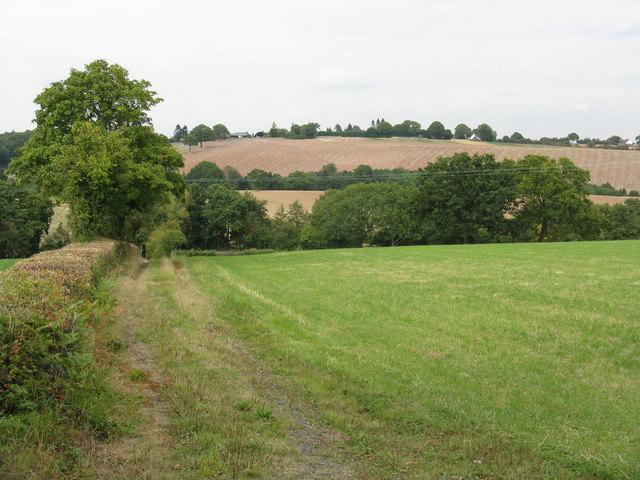 Farm access track off Rectory Lane