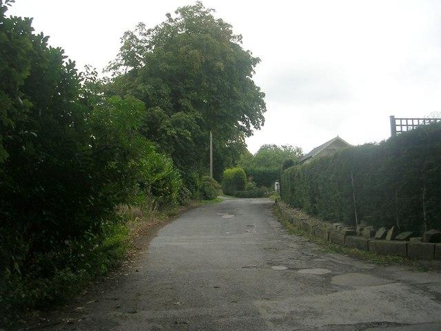 Rawdon Drive - viewed from High Close